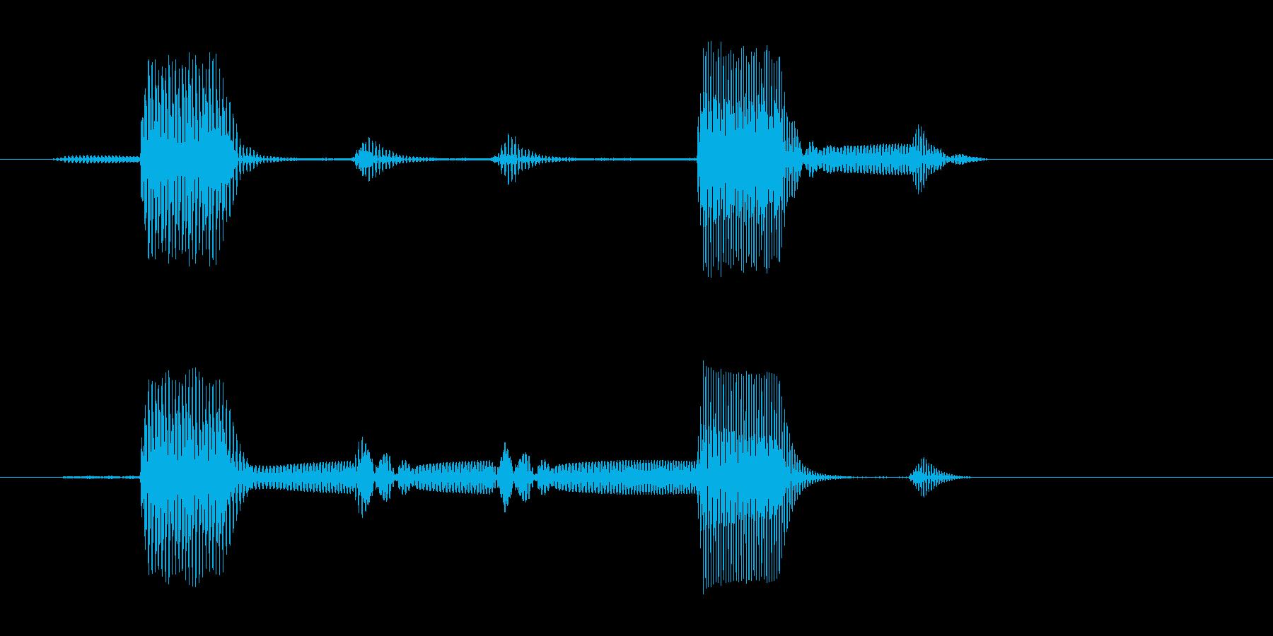 ポケ(コテッなど)短い高音の再生済みの波形