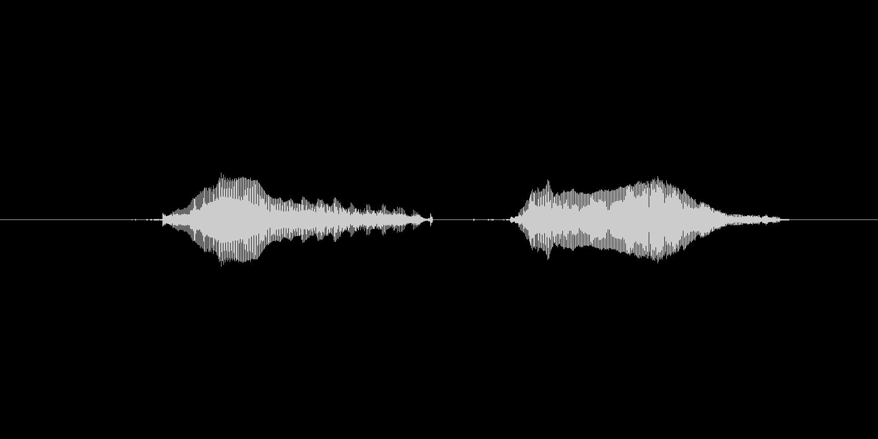 猫のミャーウミャーーウ(甘えた声)の未再生の波形