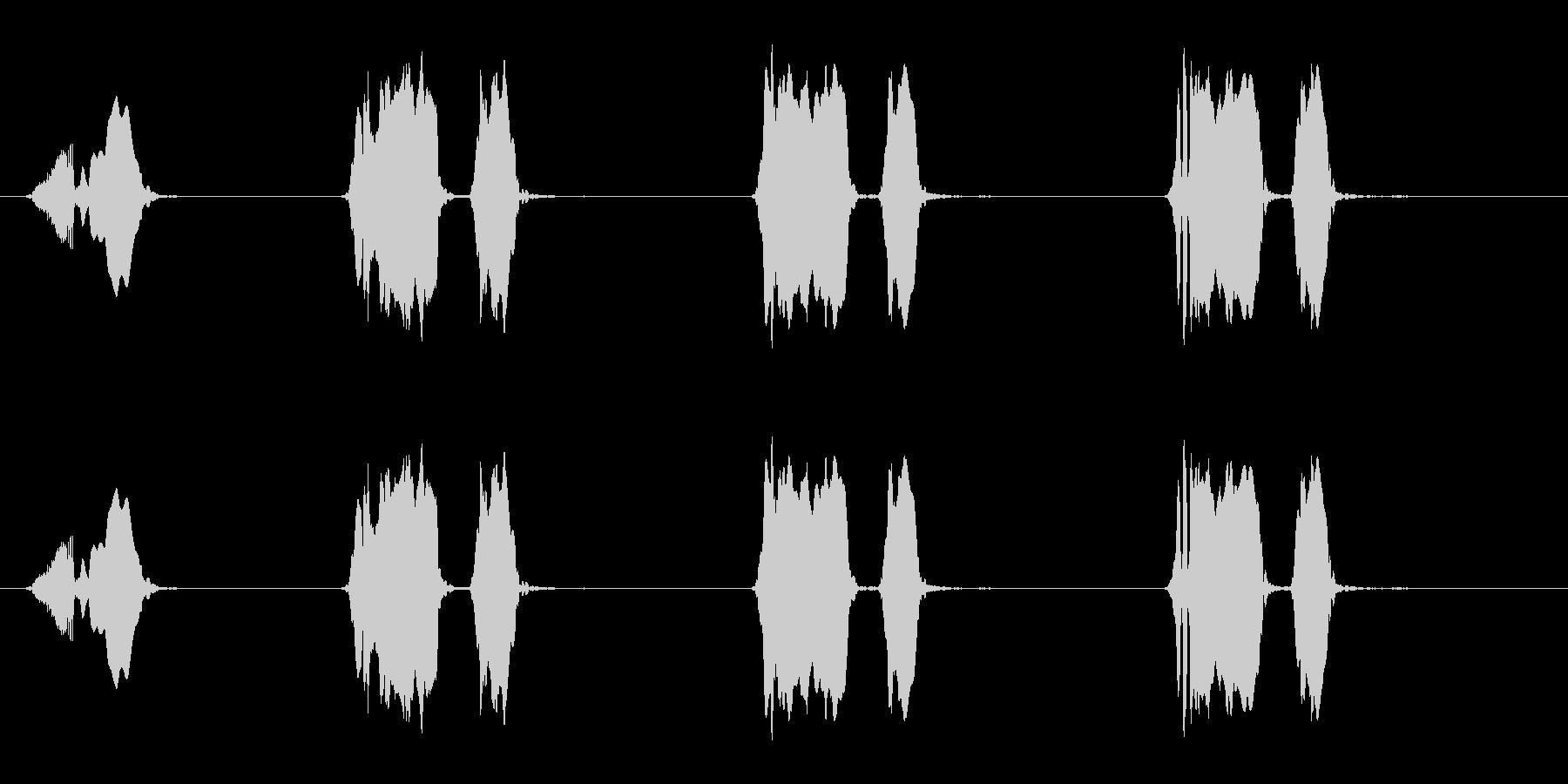 ウズラの鳴き声03-01の未再生の波形