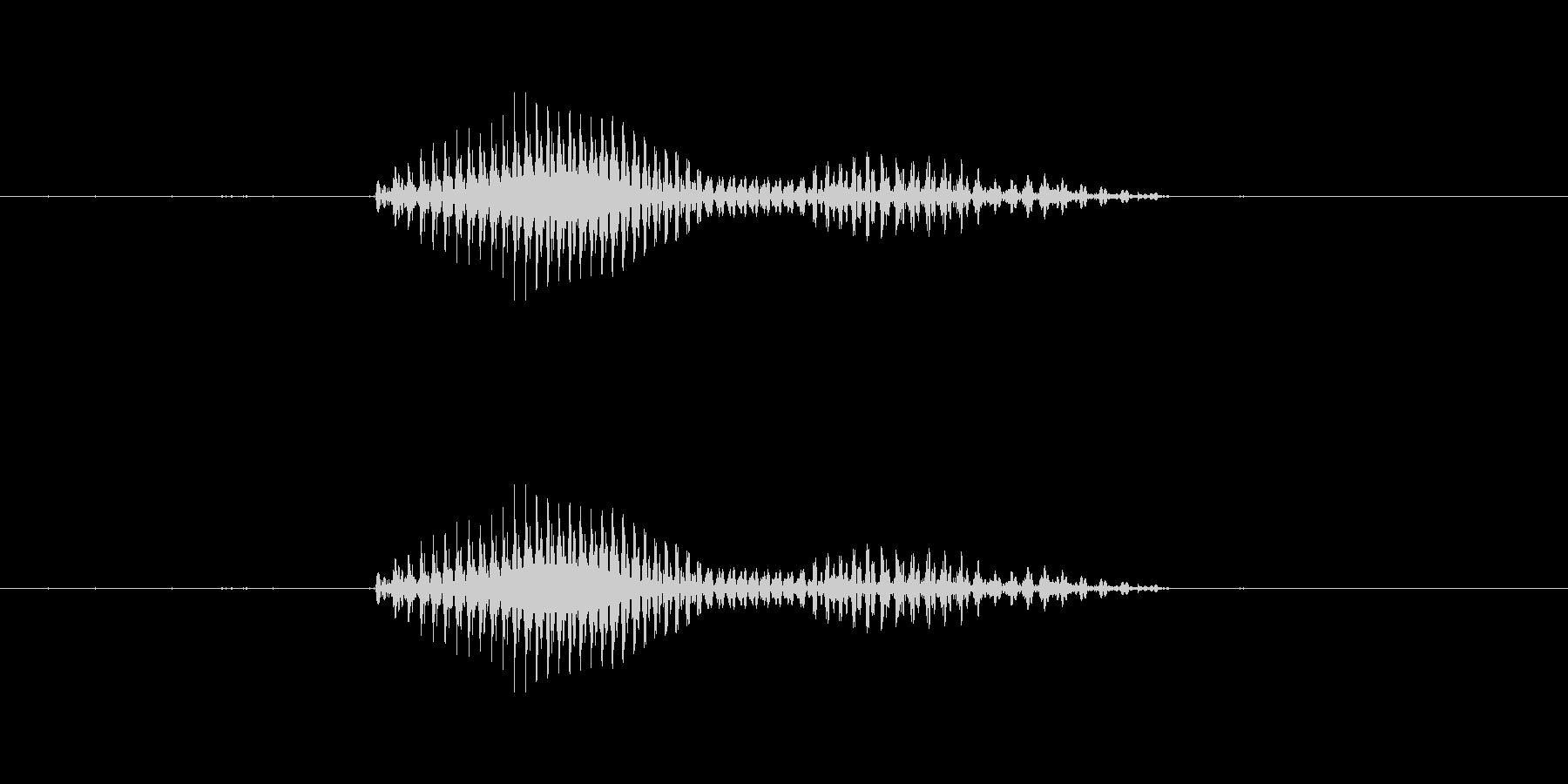青森(県名)の未再生の波形