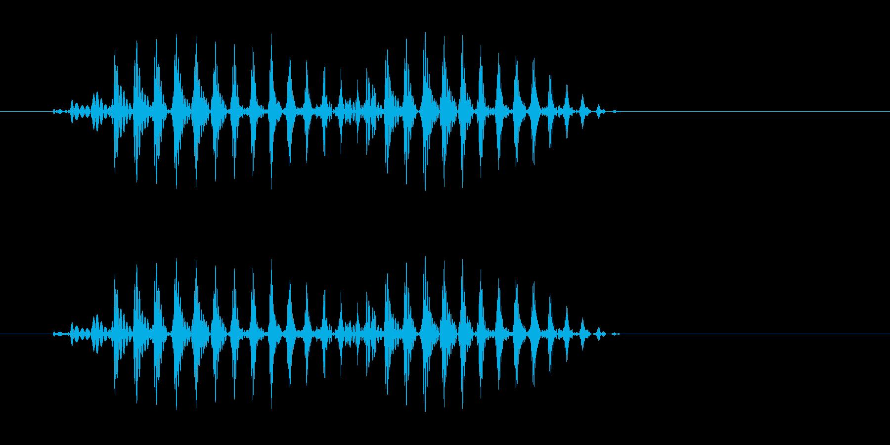 パバ(高速で中音の音)の再生済みの波形