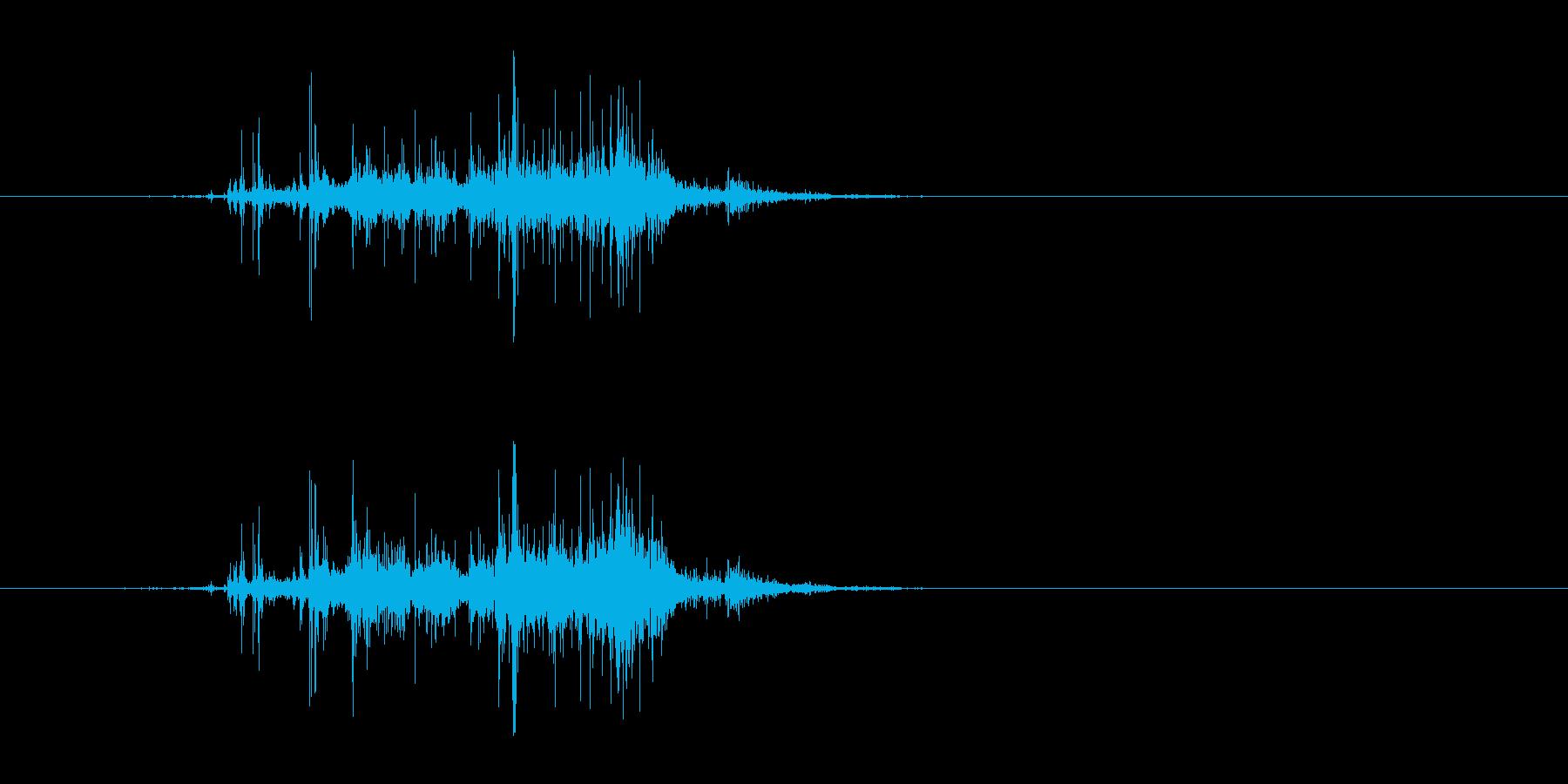 木が倒れる音(メリメリッ、ドサッ)の再生済みの波形