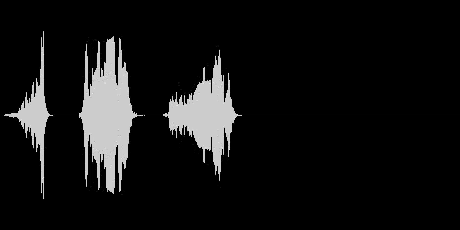 ふたつの未再生の波形