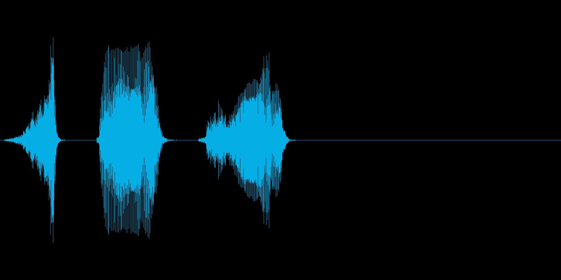 ふたつの再生済みの波形