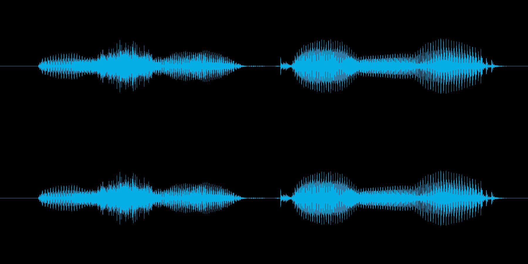 【日数・後】2週間後の再生済みの波形