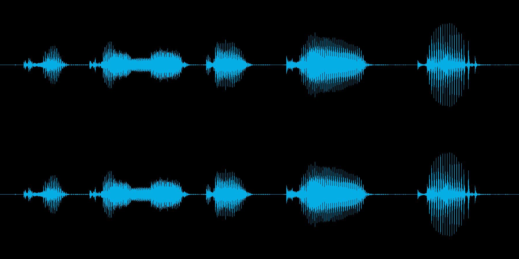 【日数・経過】9日経過の再生済みの波形