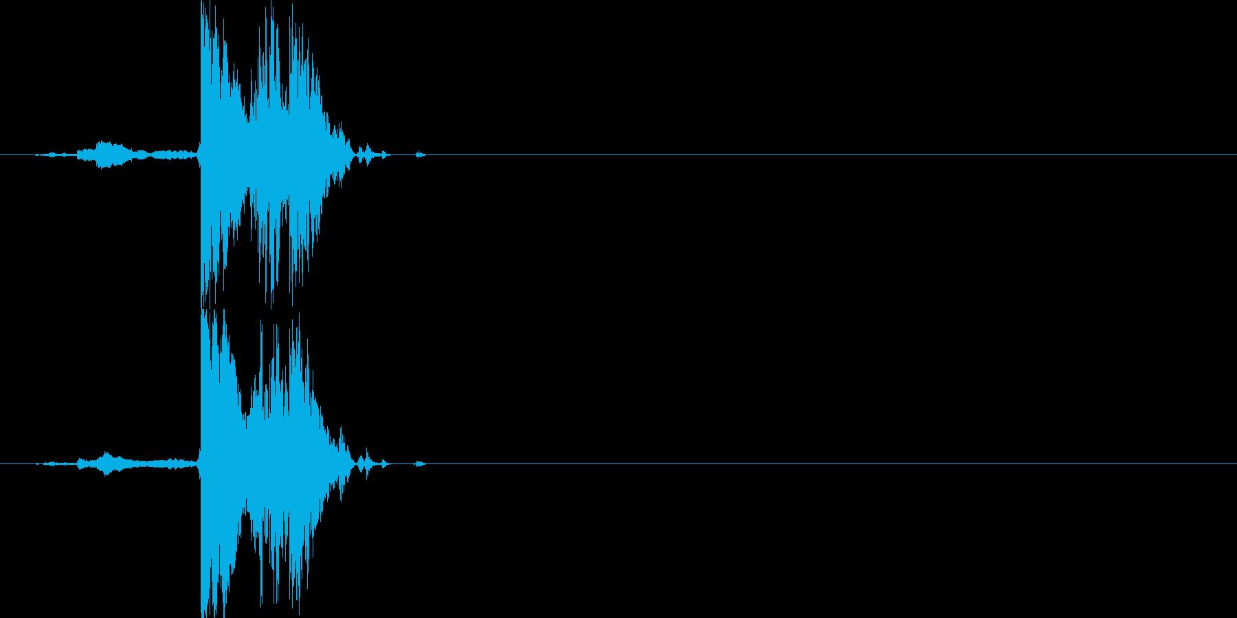チャリン(短い、複数音)の再生済みの波形