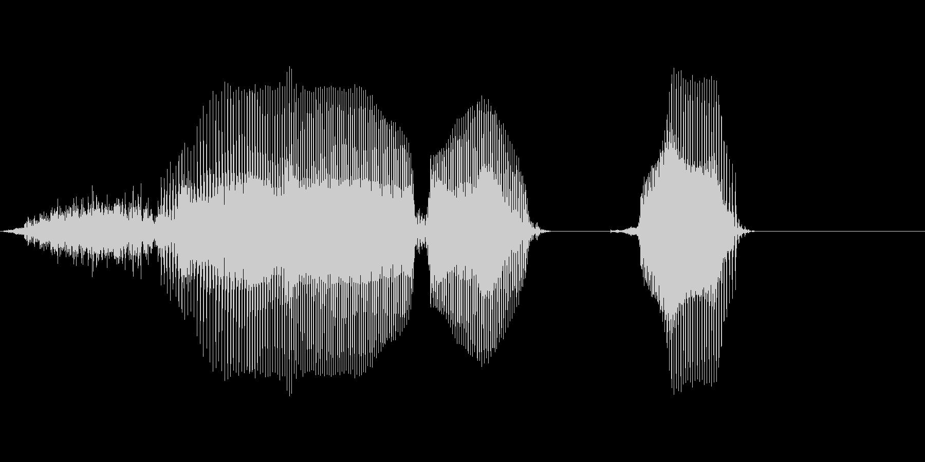 西暦の未再生の波形
