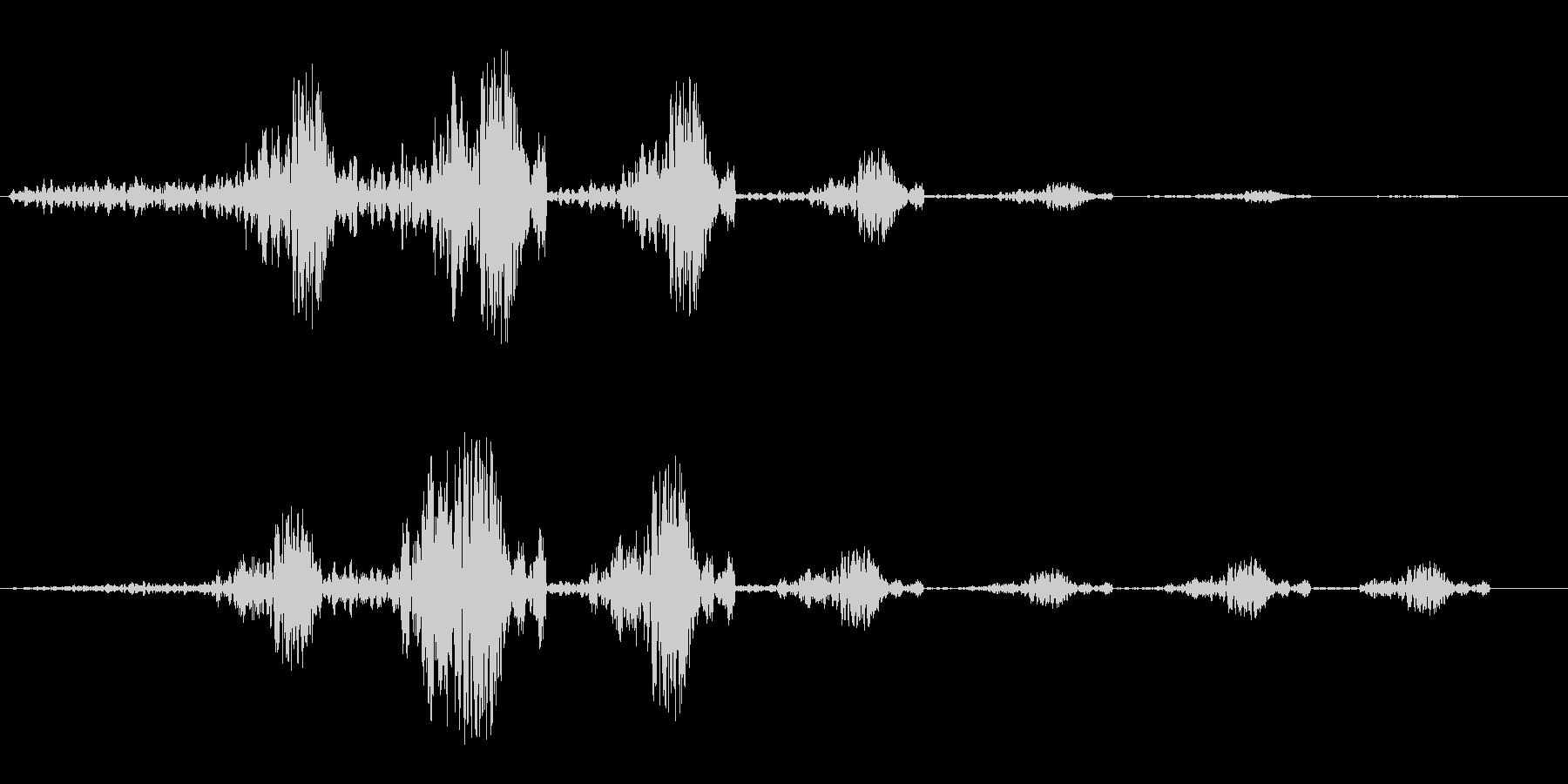 グーフワンフワン(通過音)の未再生の波形