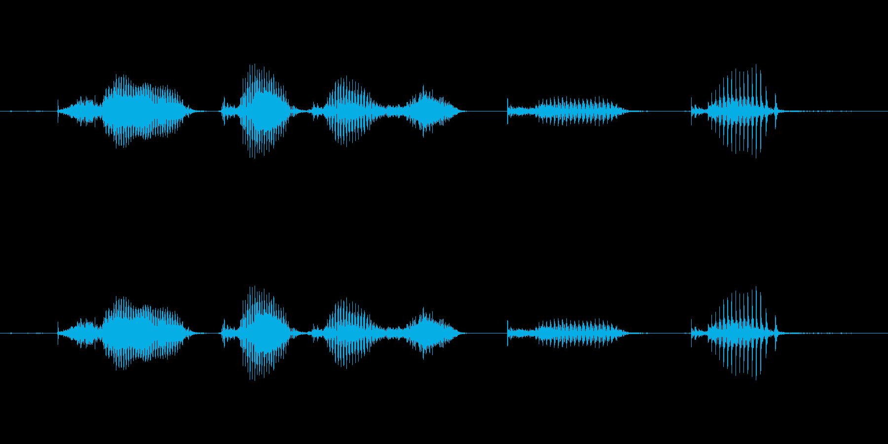 【日数・経過】9ヶ月経過の再生済みの波形