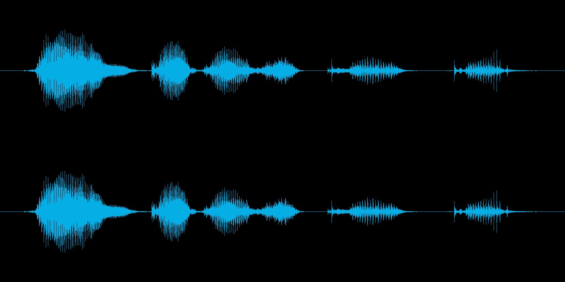 【日数・経過】4ヶ月経過の再生済みの波形