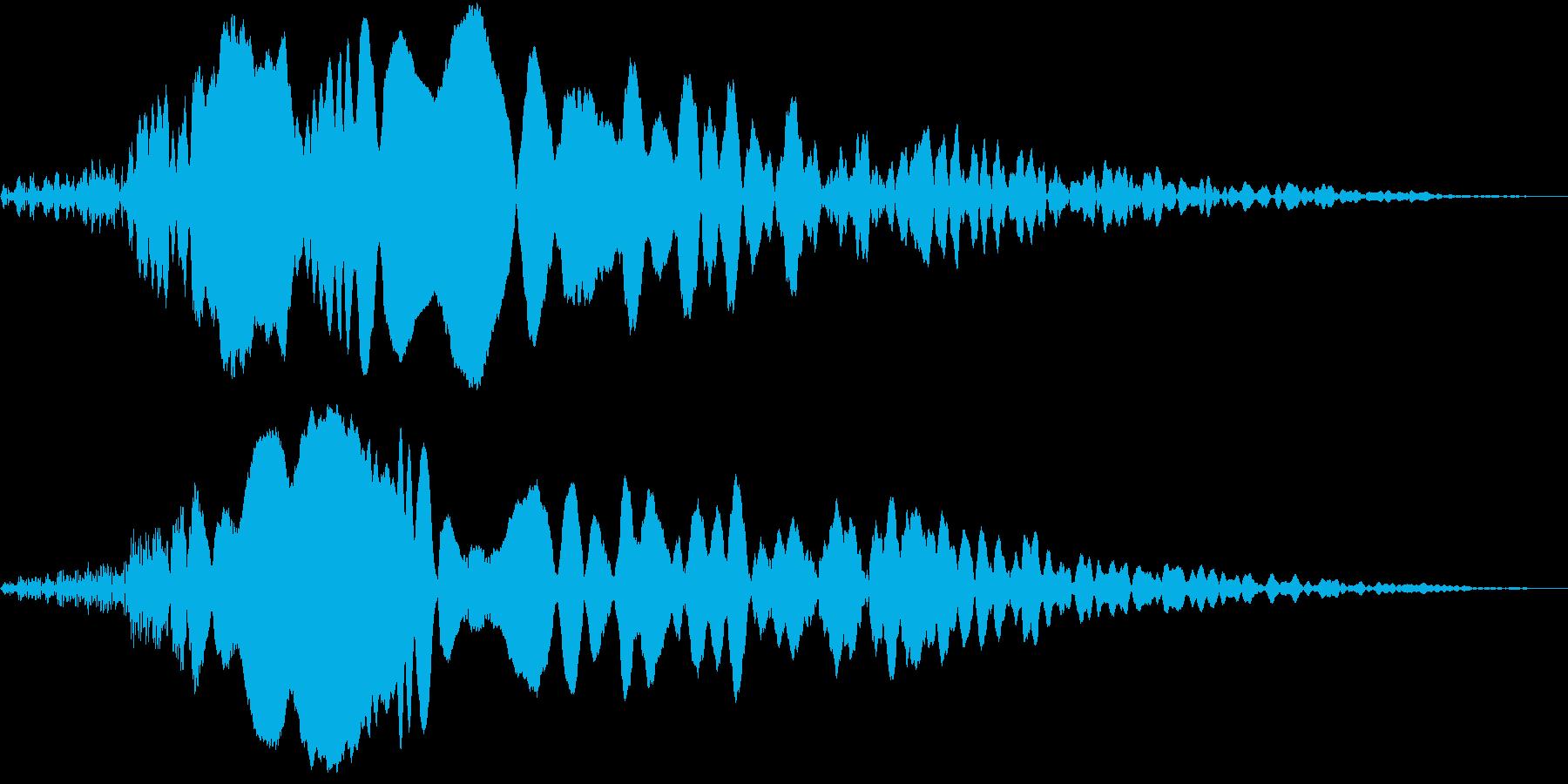 Animal 謎の生き物の静かな雄叫びの再生済みの波形