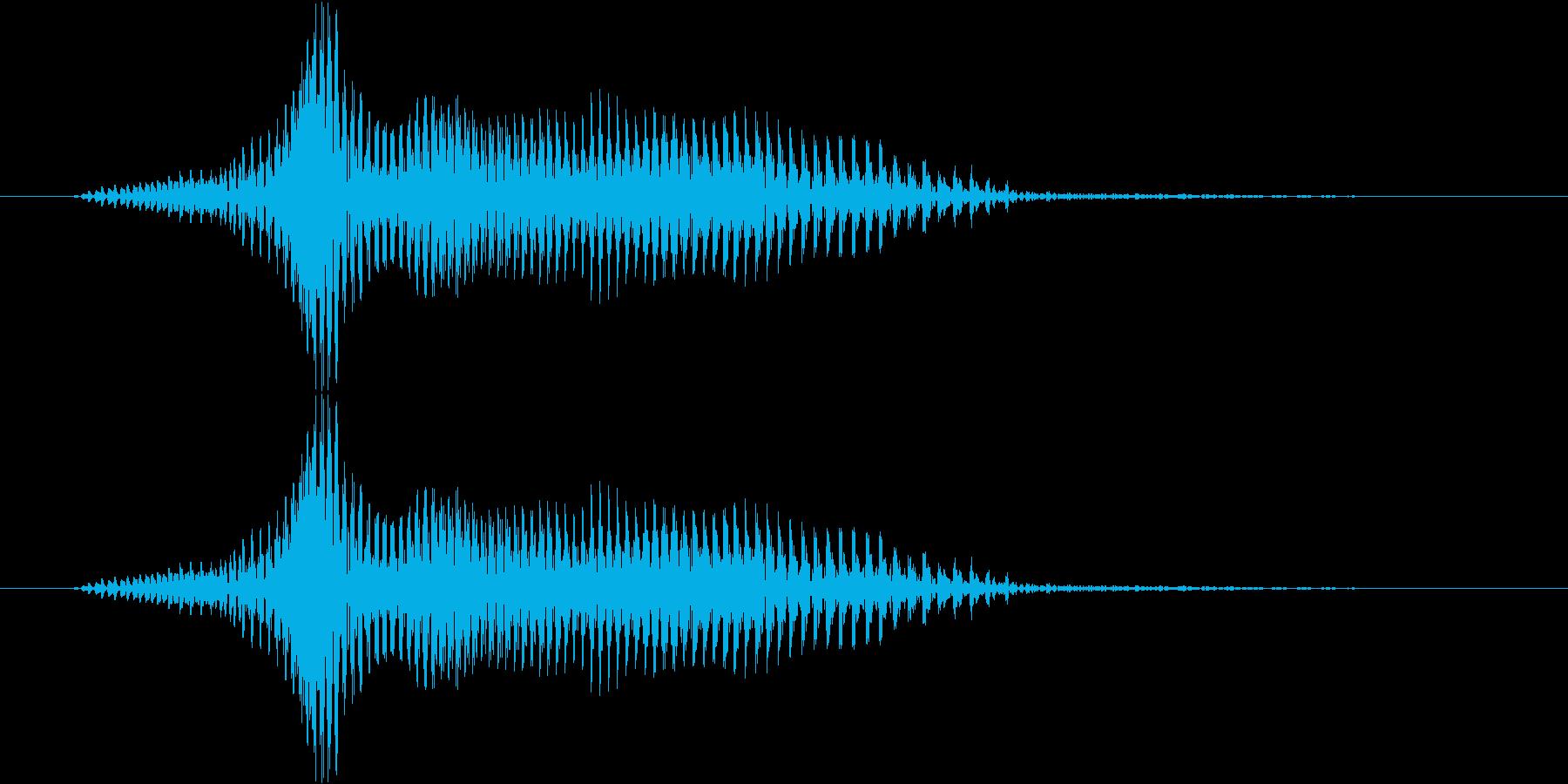 ワンの再生済みの波形