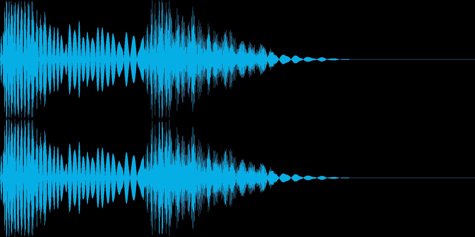 キシッ(猛獣の関節がきしむ音)の再生済みの波形