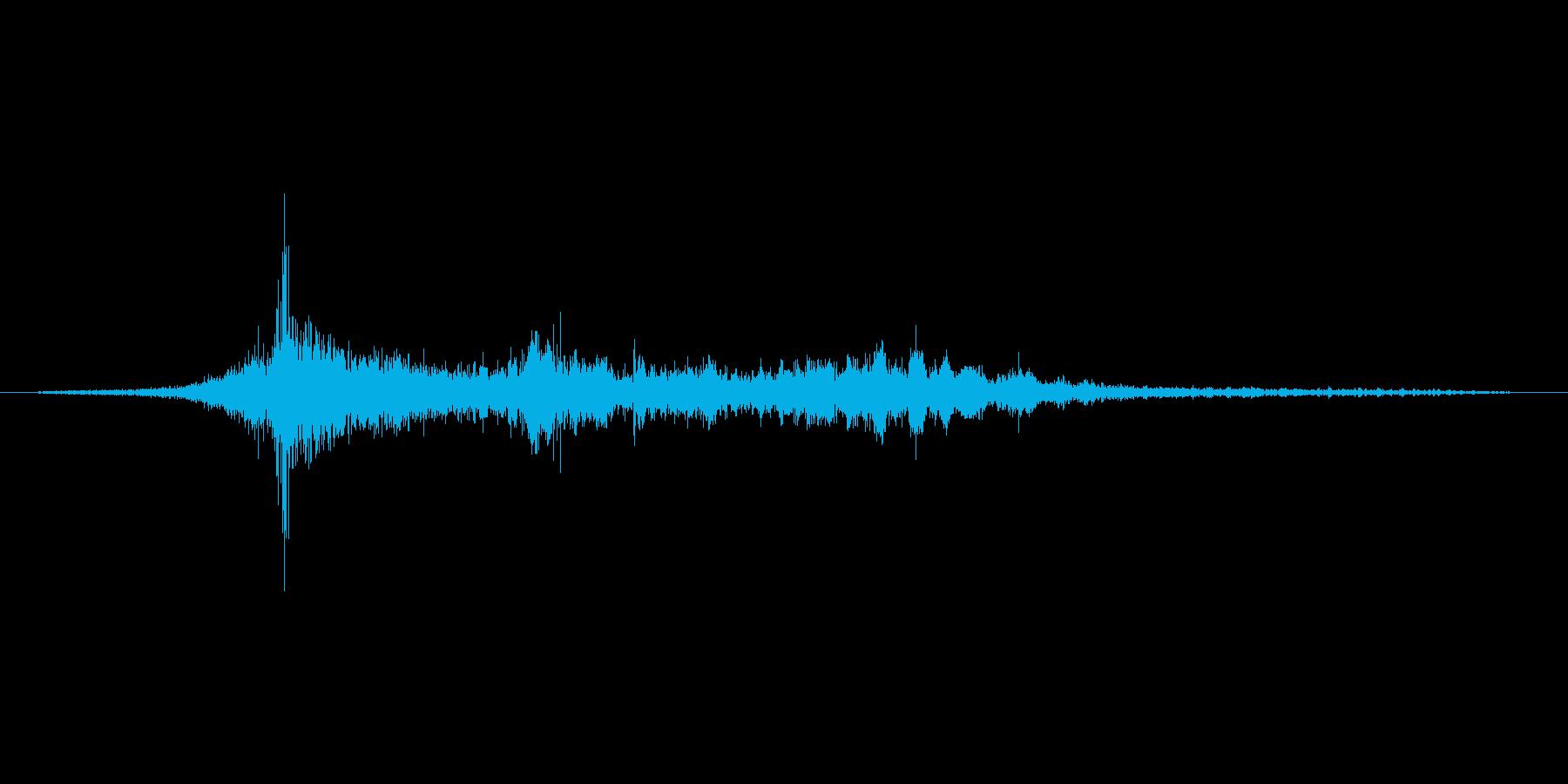 がさがさの再生済みの波形