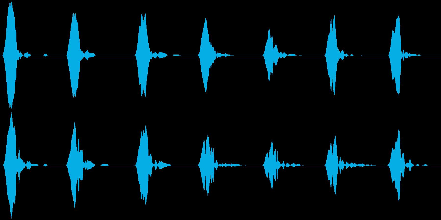 野鳥の、さえずりB  ヒッ×7の再生済みの波形