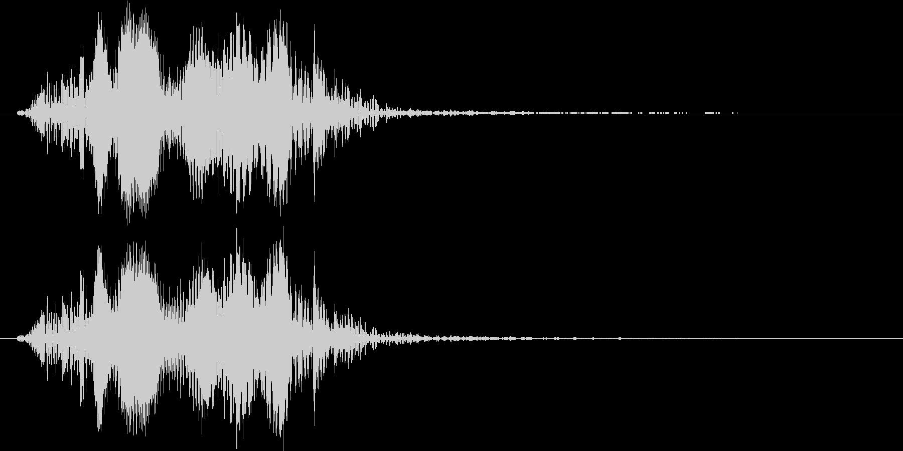カリフォルニアアシカ(低めの声)の未再生の波形