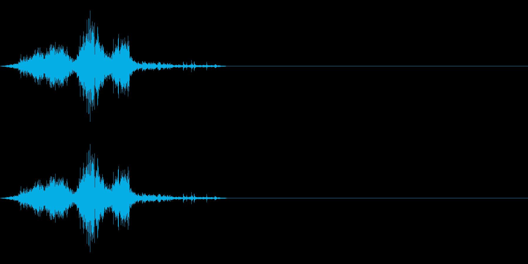 ザシュ!斬撃 刀で切った音 その5の再生済みの波形