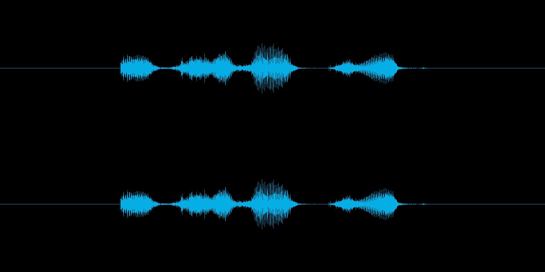 【月】1月の再生済みの波形