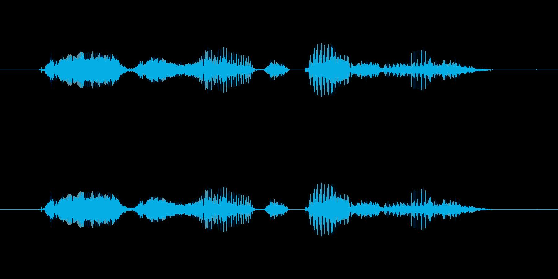 【時報・時間】11時をお伝えしますの再生済みの波形