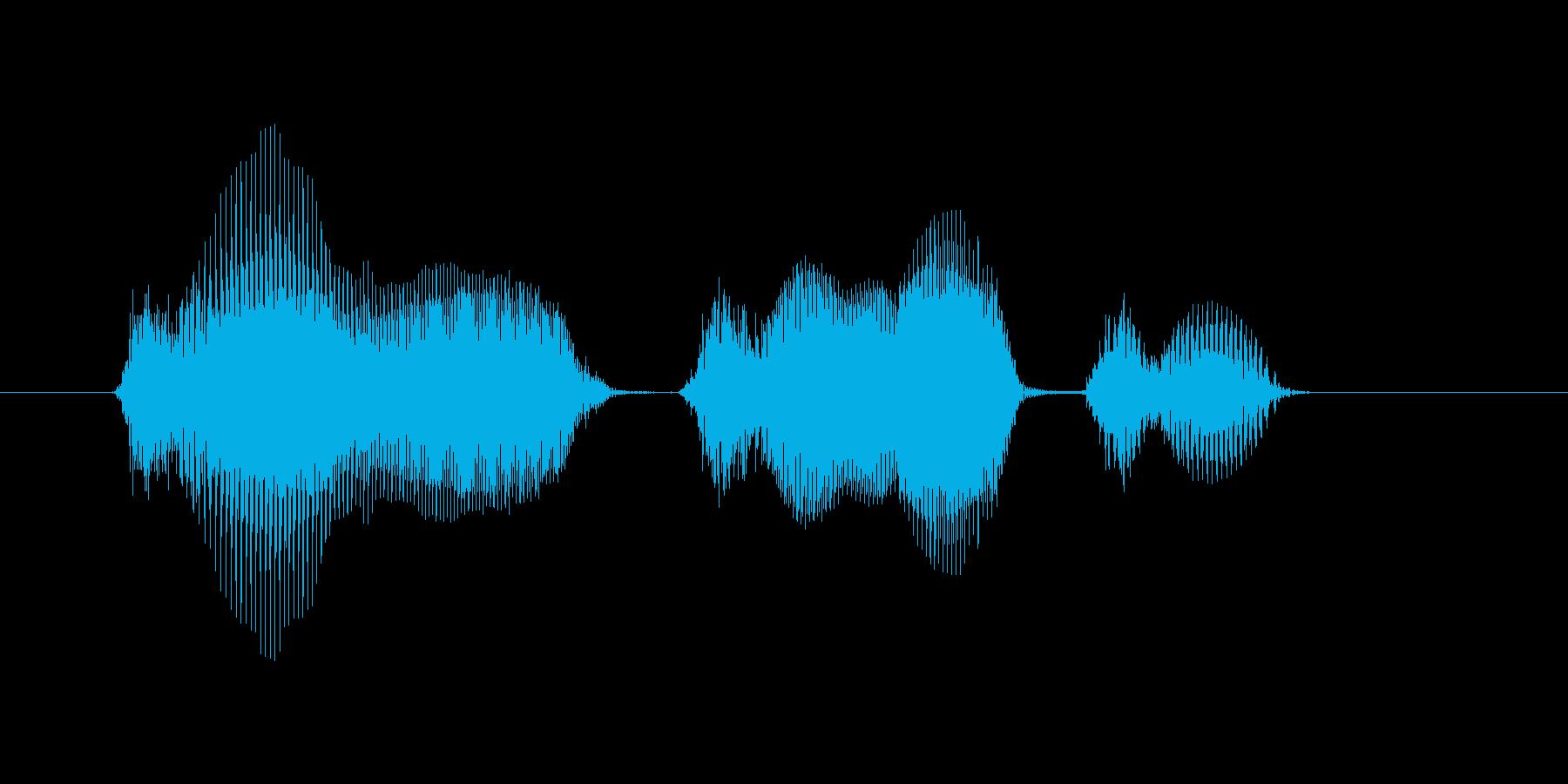 11月(11月・十一月)の再生済みの波形