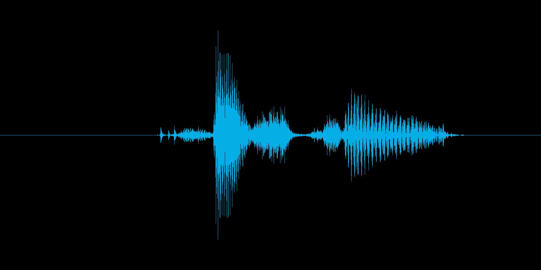 Question (発音) quest…の再生済みの波形
