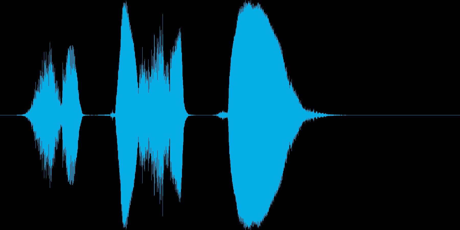 「しくしく」の再生済みの波形