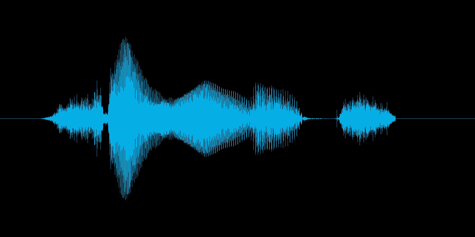 3月(3月・三月)の再生済みの波形