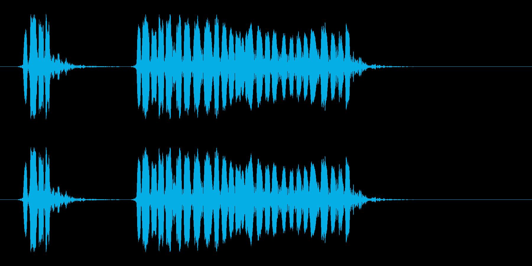 ホイッスルの音_06(ピッピーッ!)の再生済みの波形