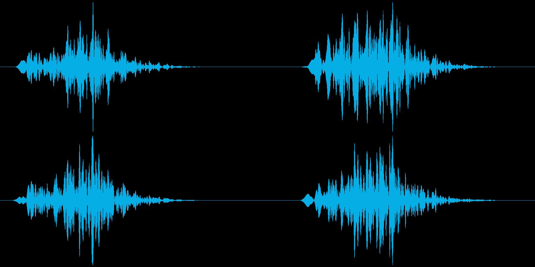 虫の鳴き声 架空/想像 ヒョロッヒョロッの再生済みの波形