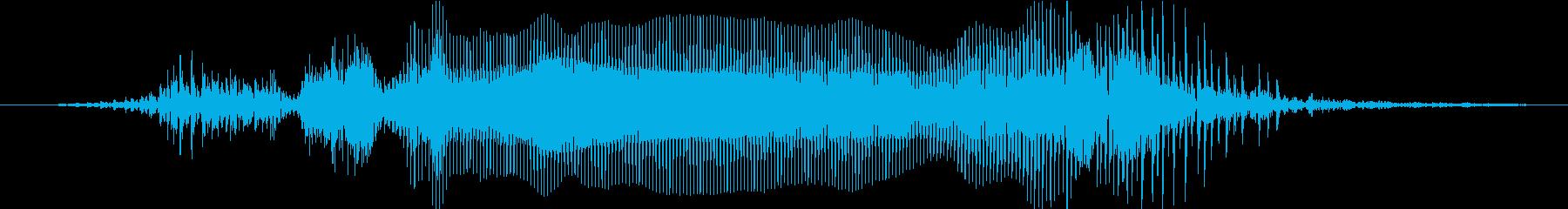 よっしゃーの再生済みの波形