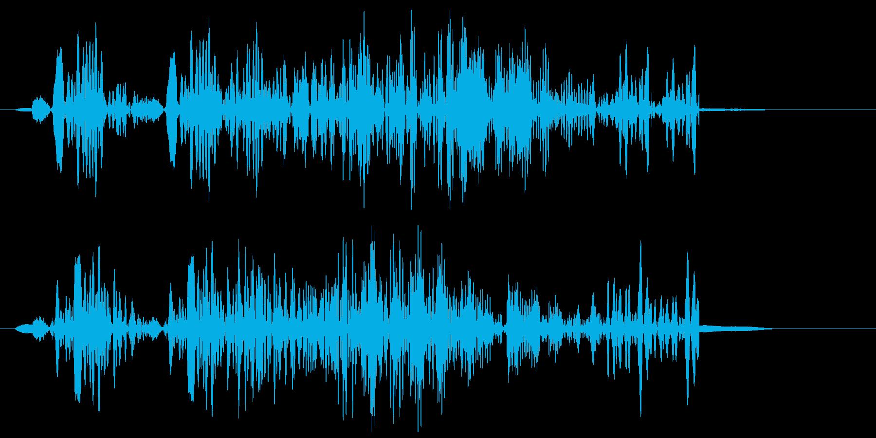 ボボォ〜エ(ゴーンなどの音)の再生済みの波形