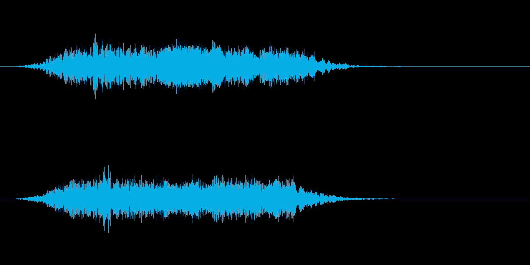モォ〜!牛の鳴き声 効果音です01の再生済みの波形