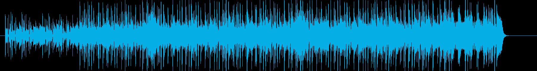 スラップベースが特徴的なワイルドファンクの再生済みの波形