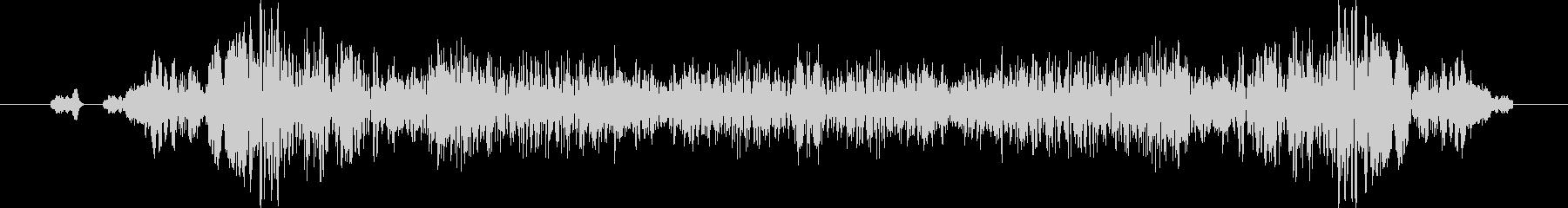 ビリュリュリュ、キュルキュルの未再生の波形