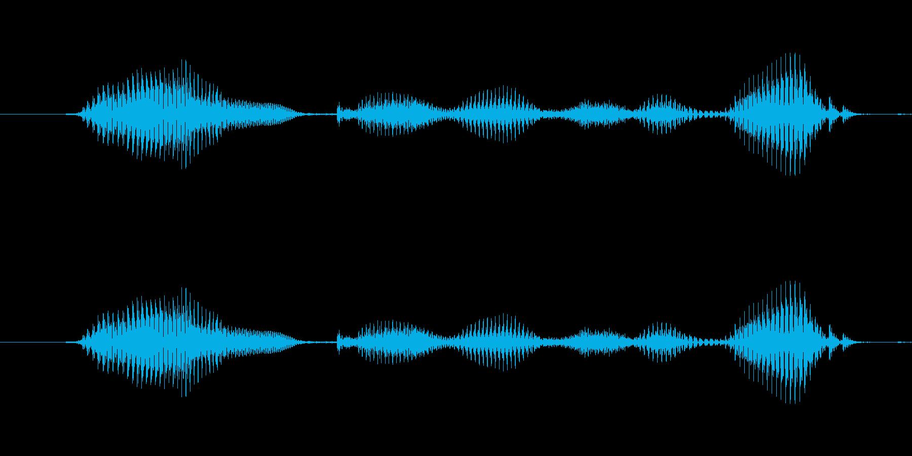 【日数・後】4ヶ月後の再生済みの波形