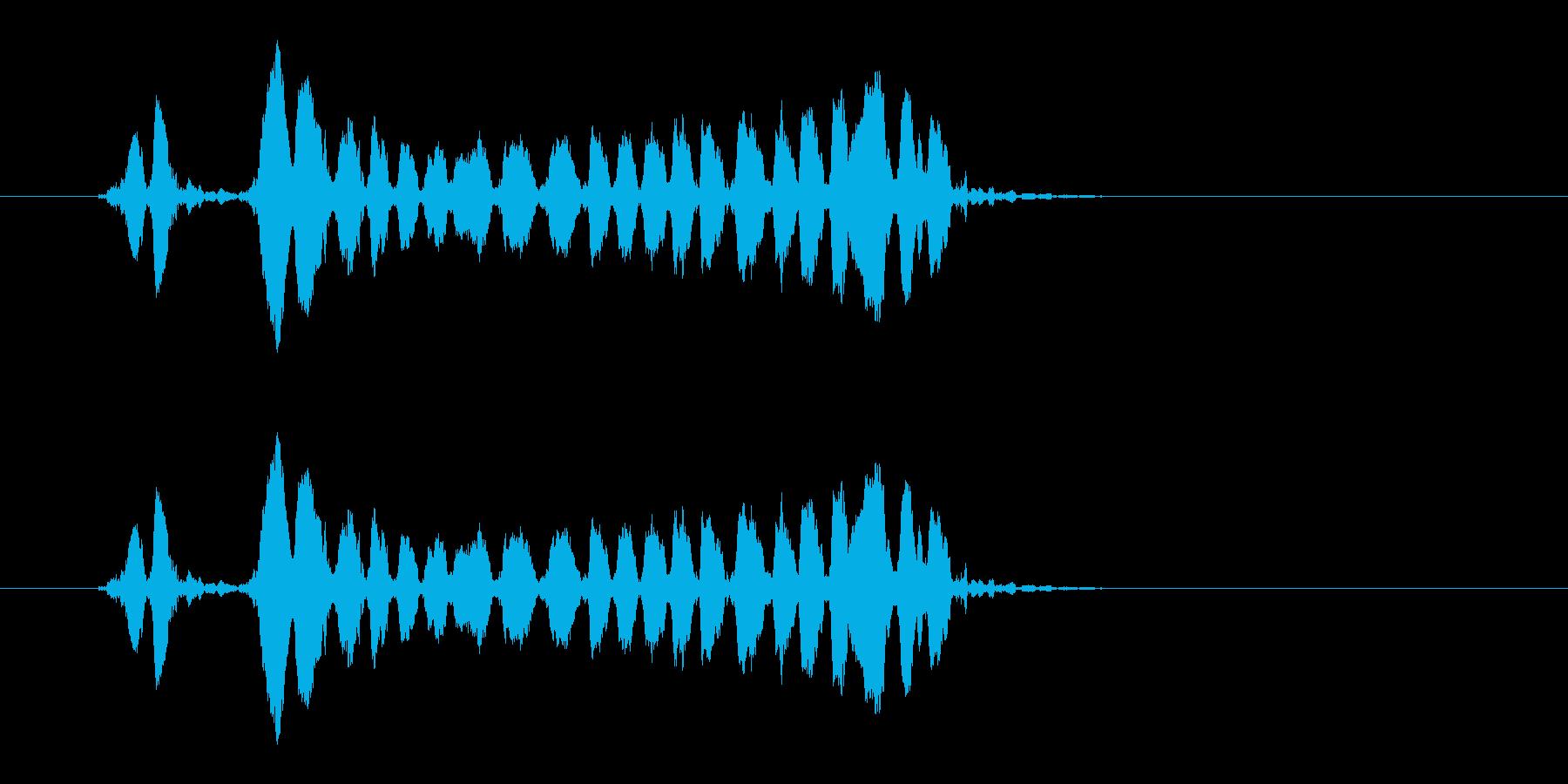 ホイッスルの音_05(ピピーッ!)の再生済みの波形