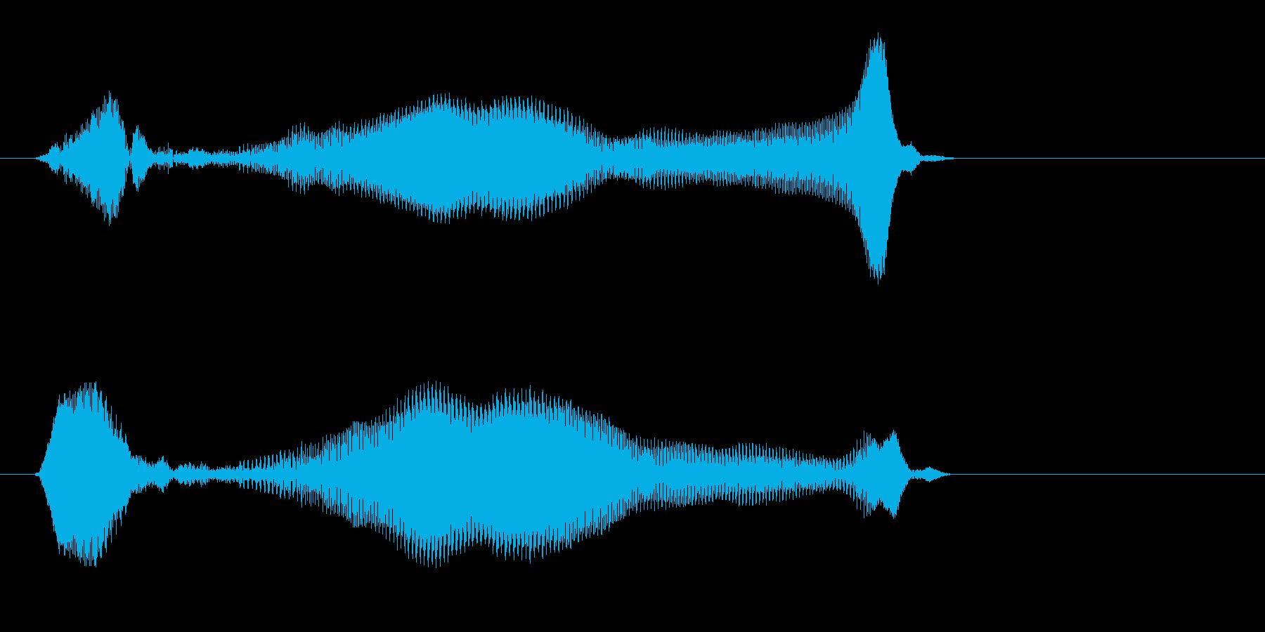 ミヤーッ(鳴き声系)の再生済みの波形