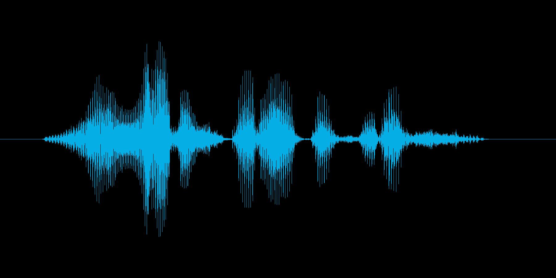 ロイヤルストレートフラッシュの再生済みの波形