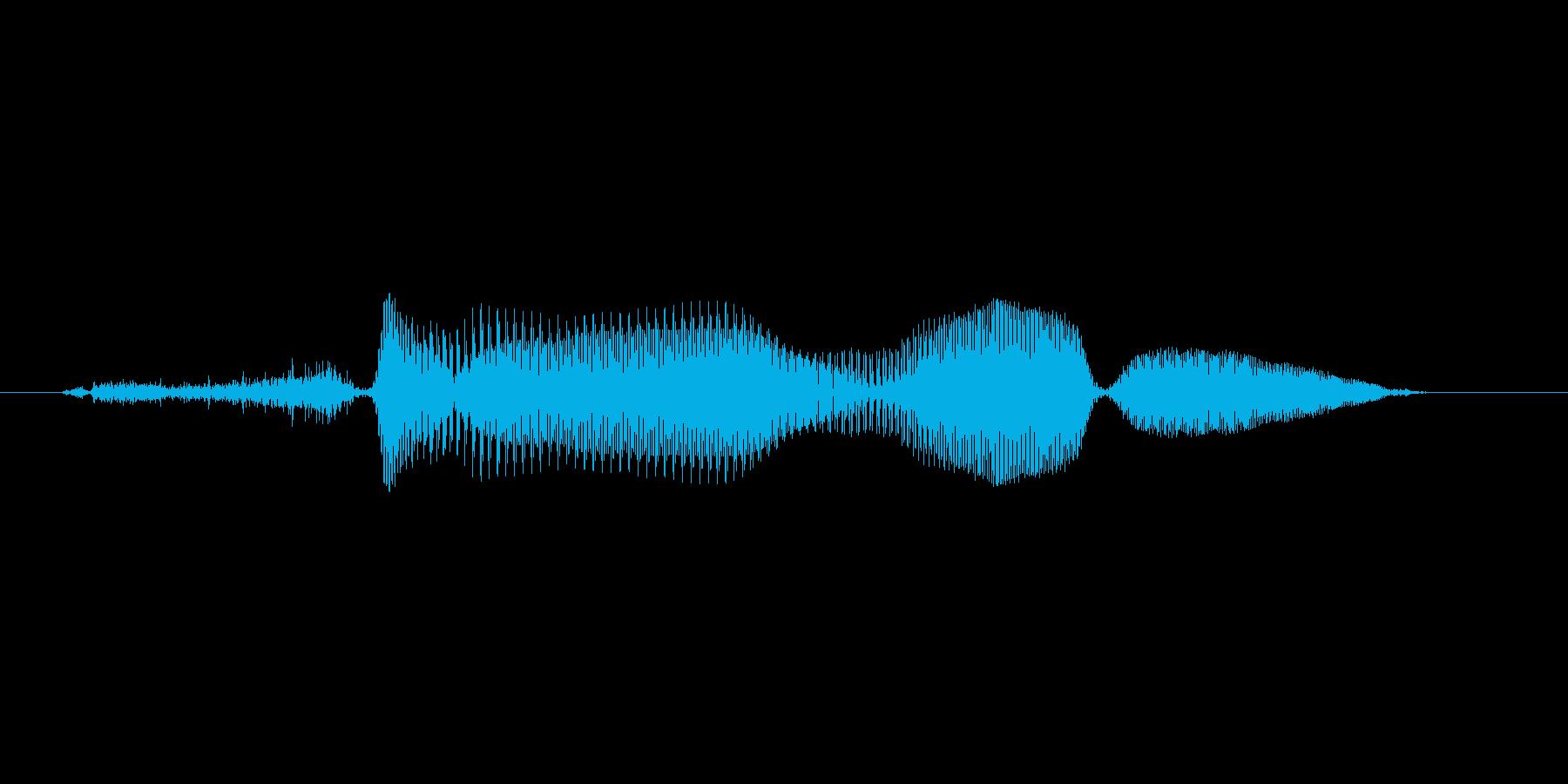 そぉれ!(Type-C)の再生済みの波形