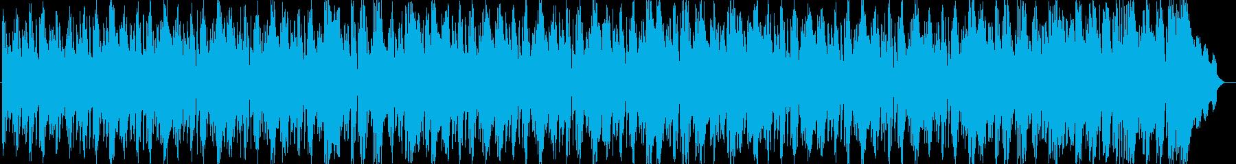 空間に放たれるタイコの一打が印象的な曲の再生済みの波形