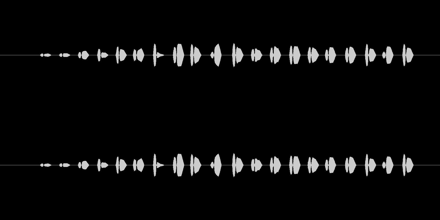 【ポップモーション24-8】の未再生の波形