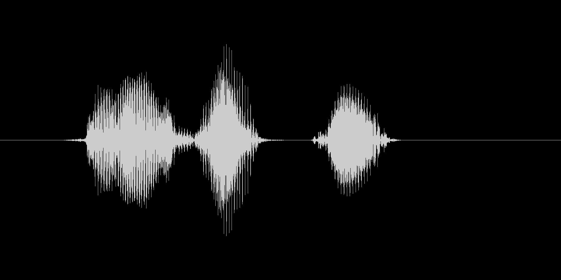 邦楽(ほうがく・方角)の未再生の波形