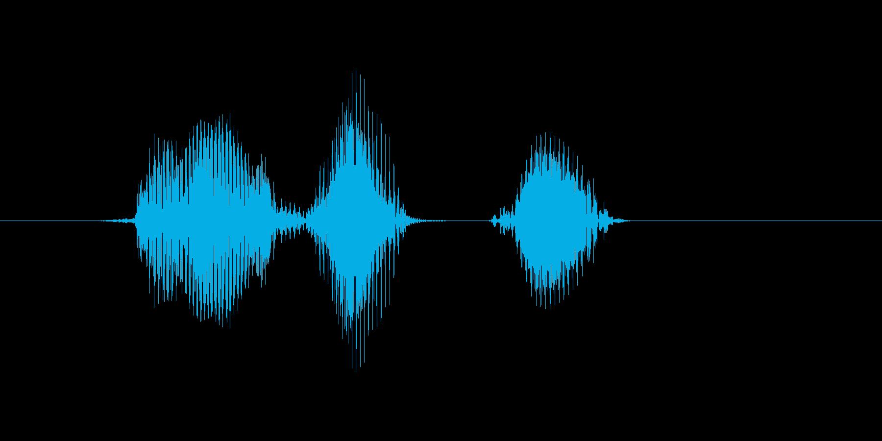 邦楽(ほうがく・方角)の再生済みの波形