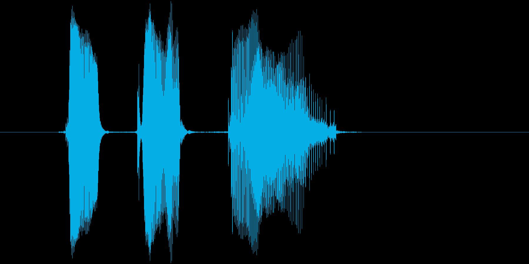 「ペケポン」の再生済みの波形
