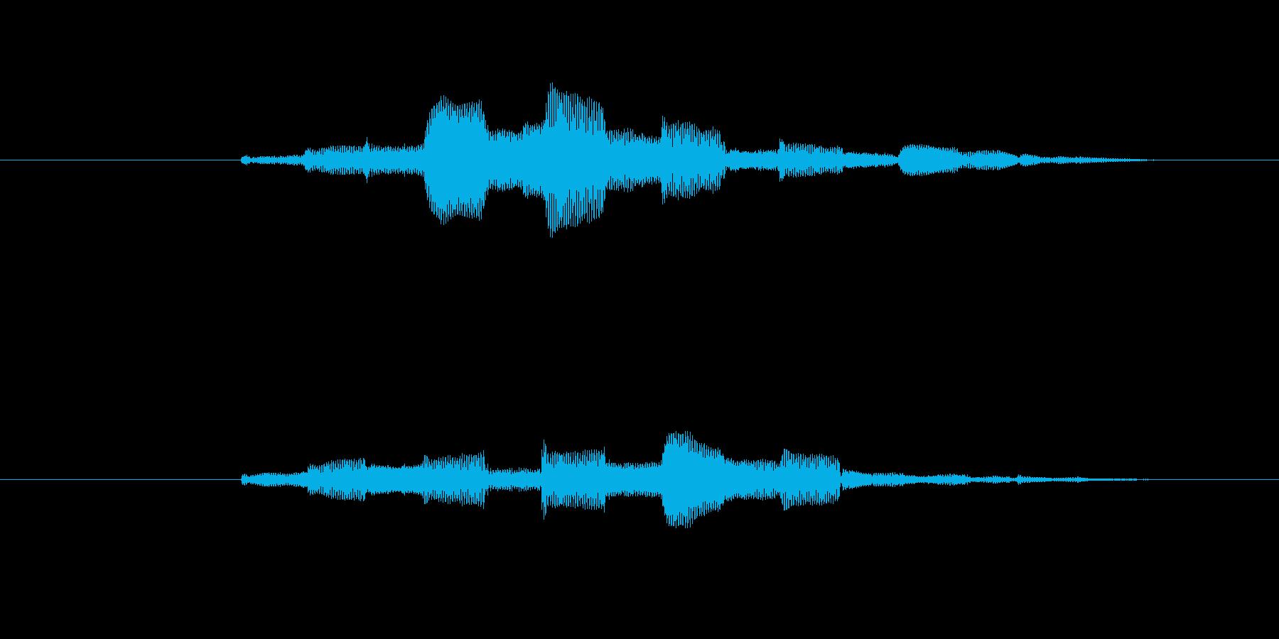 ピポピポピポピポのような音の再生済みの波形