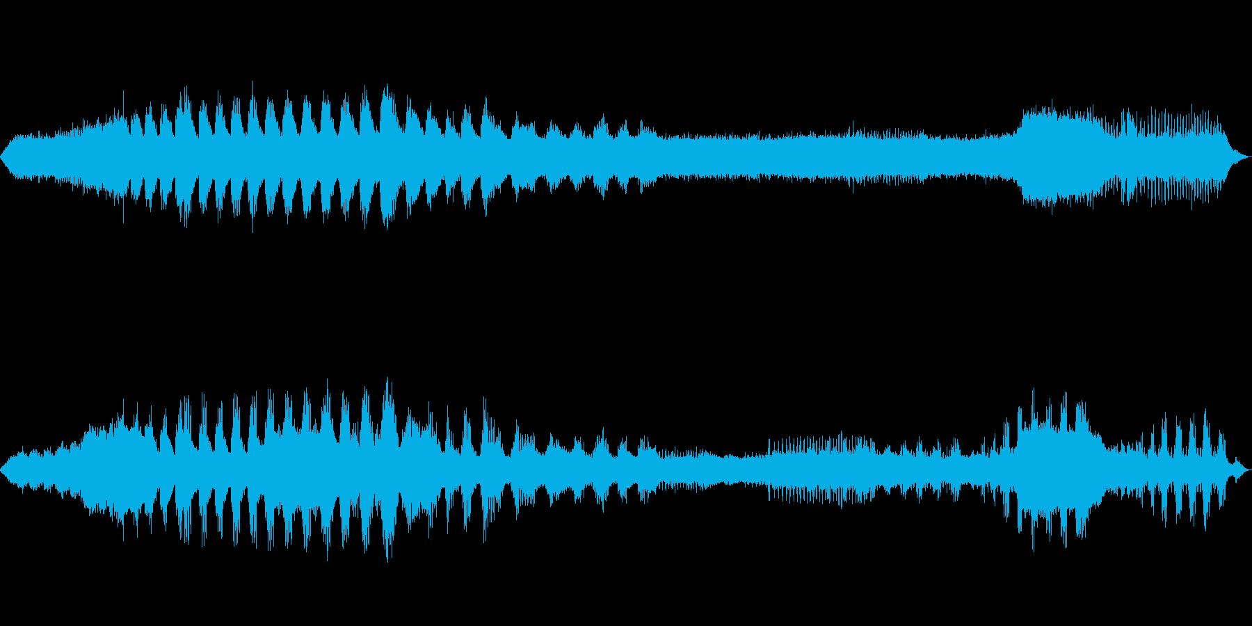 【自然音】蝉の鳴き声01(丹沢湖)の再生済みの波形