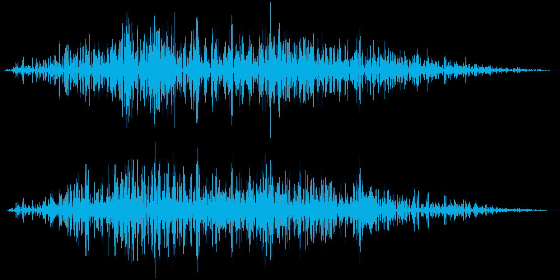 引き戸(木製、長め)ガラガラガラガラ…の再生済みの波形