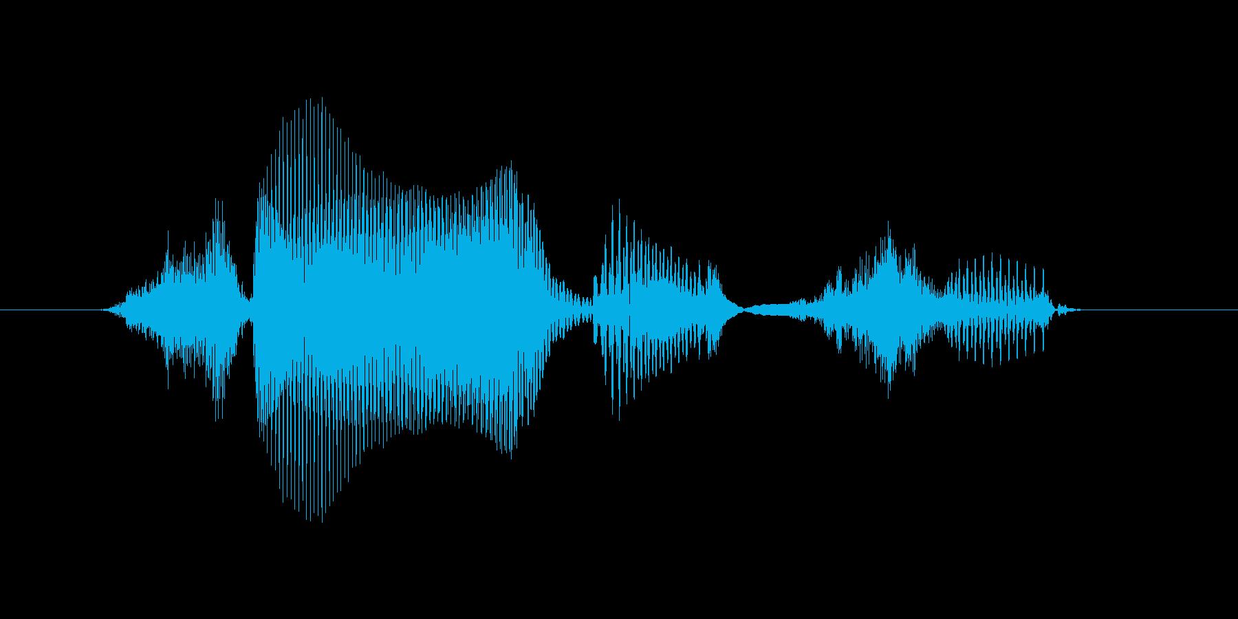 生物(せいぶつ)の再生済みの波形