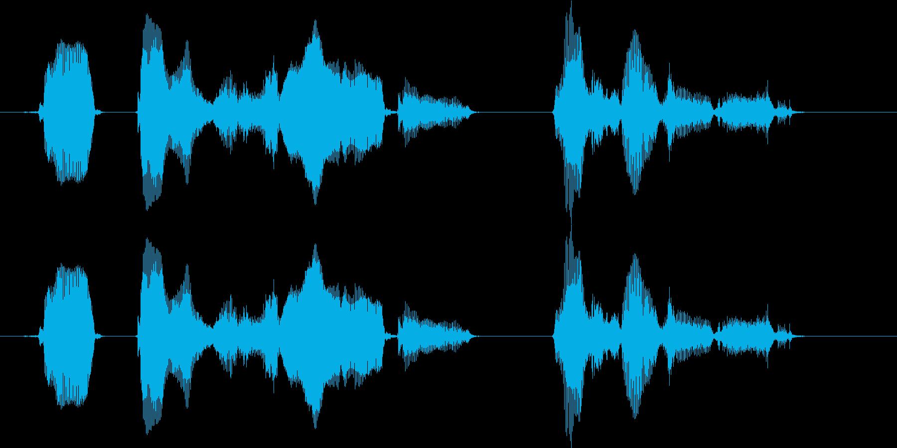 ピーっという発信音のあとに、メッセージ…の再生済みの波形